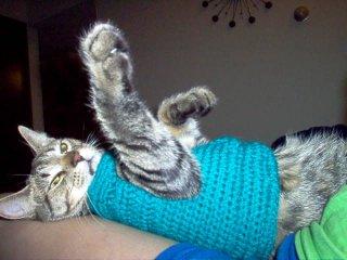 Free Crochet Pattern Cat Sweater : CROCHET REMOTE HOLDER PATTERN FREE CROCHET PATTERNS