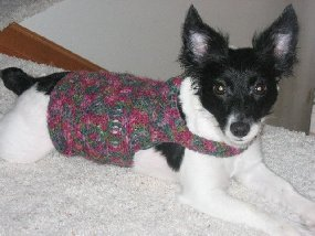 Crocheted Dog Sweaters Crocheted Clothes For Dogs
