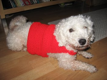 Crocheted Dog Sweater Pattern