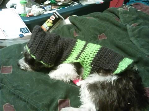 Dog Sweater Free Crochet Pattern