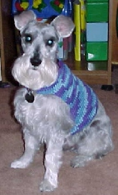 Dog Crochet Sweater Patterns | All For Crochet