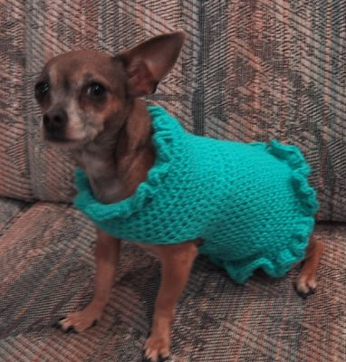 Free Crochet Pattern 60541 Striped Dog Sweater : Lion Brand Yarn