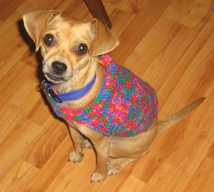 Bernat: Pattern Detail - Super Value - Dog Coat (crochet)