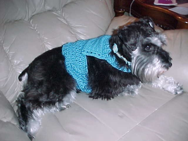 Dog Sweater with Ribbed Edge Crochet Pattern