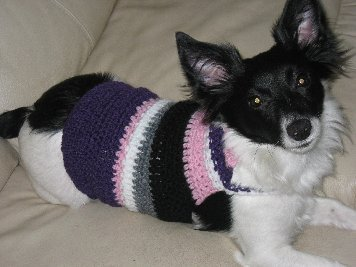 COZYCONCEPTS BOSTON TERRIER CROCHET PATTERN AFGHAN GRAPH CROSS