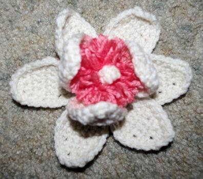 Free Crochet Magnolia Flower Pattern : Magnolia Blossom Crochet Pattern