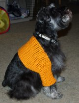Sawyer's Shrug Crochet Pattern